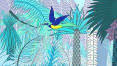 Sira y el pájaro negro-Manos Unidas