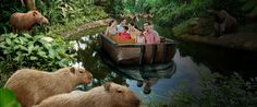 River Safari Singapore - I can have an environmental escape and a shopping holiday all in one!
