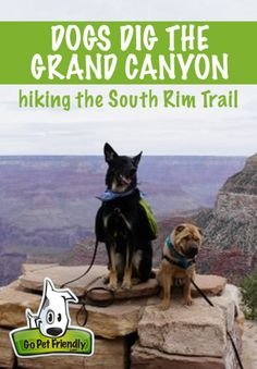 Dogs Dig the Grand Canyon - Hiking the South Rim Trail