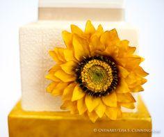 Oven Art, Ovenart, Oven Art Designer Cake, Designer Cake, Elegant Cakes, Haute Couture, Fondant, Gum Paste Flowers, Gum paste Sunflower, Gold Leaf Cake, Cake Art