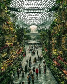Singapore's new Changi Airport, considered by many as the best airport in the world even has its own indoor waterfall! ✈️🏝 Share this with someone you would want to travel through there with! Photos by Source Green Architecture, Futuristic Architecture, Amazing Architecture, Mini Mundo, Places To Travel, Places To Visit, Nature Photography, Travel Photography, Canon Photography