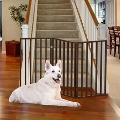 Wooden Pet Gate- Tall Freestanding Indoor Barrier Fence, Lightweight and Foldable for Dogs, Puppies, Pets- 54 by Petmaker (Dark Brown) Size: 54 inch Dog Barrier, Baby Gates, Dog Gates, Pet Gate, Wooden Gates, Dog Rooms, Brown Wood, Dark Brown, Dog Supplies