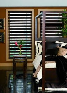 Allure Shades Are A Sleek Elegant And Modern Window Shading Solution Lori Sanders Budget Blinds Treatments