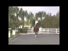 How to Leg Yield by Dressage Hub - YouTube