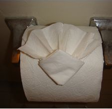 How to Fold a Toilet Paper Origami Diamond Fan. Good to know for work! Napkin Origami, Towel Origami, Napkin Folding, Paper Folding, Toilet Paper Origami, Toilet Paper Art, Paper Craft, Cleaning Blinds, Cleaning Tips