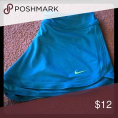 Nike shorts Authentic Nike Shorts excellent condition . I DONT SMOKE OR HAVE ANIMALS Shorts Bermudas