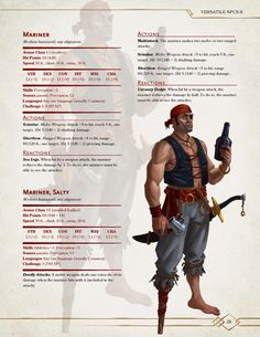 Dungeons And Dragons Rules, Dungeons And Dragons Homebrew, Dnd Stats, Dnd Classes, Dnd Races, Dungeon Master's Guide, Dnd 5e Homebrew, Pirate Adventure, Dnd Monsters