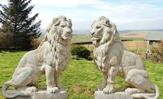 Giant pair of stone cast lions Animal Statues, Animal Sculptures, Sculpture Art, Outdoor Statues, Garden Statues, Stone Lion, Fu Dog, In The Zoo, Log Cabin Homes