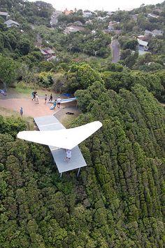 Hang gliding   Flickr - Photo Sharing!