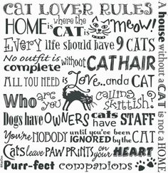 """THE CAT LOVER RULES - Cat Lover Life Quotes 100% Cotton Flour Sack Dish Towel / Tea Towel, 26"""" x 26"""" http://www.mainecoonguide.com/what-is-the-average-maine-coon-lifespan/"""