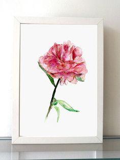 Peony flower Art Watercolor Painting Giclee print par Zendrawing