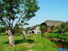 Limburgs landschap -  Wijlre