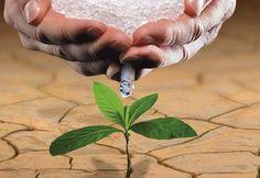 L'eau solide qui pourrait révolutionner l'agriculture mondiale