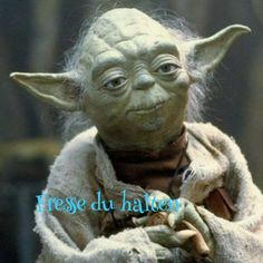 A Star Wars Yoda meme. Caption your own images or memes with our Meme Generator. 9gag Funny, Hilarious, Yoda Quotes, Funny Quotes, Funny Memes, Drunk Quotes, Yoda Meme, Yoda Funny, Monday Memes