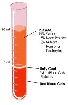 CBC blood composition
