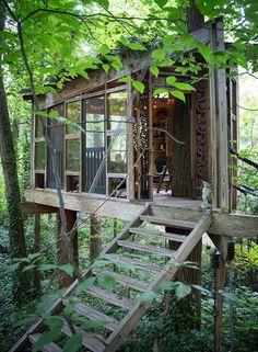 ¿Vivirías en una casa en un árbol?