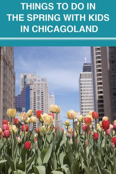 We've put together a simple guide to help you plan out your spring activities for 2021. Enjoy three months of fun covering March, April and May. Spring Activities, Fun Activities, Things To Do, Chicago, March, How To Plan, Simple, Plants, Kids