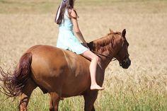 Instagram media by my_flyinghorse - ❤ Comment something ⬇ • #horse #equestrian #equestriangirl #liberty #dressage #freedressage #free #dressur #freiheit #like4like #follow4follow #l4l #f4f #horse #horseride #horselove #pfw_post #pfh_post #pspwtd_pferd #yoho_post #pt_abm #picoftheday