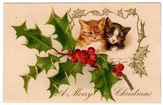 Vintage Christmas Card ~ Christmas Kittens w/ Holly & Berries ~ 1910