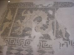Mosaic of Scylla