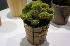 「土に還る」というコンセプトのもと、杉などの間伐材を丸太から削り出してつくられた「Timber…