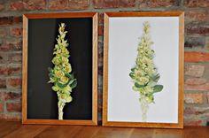 Posters with Ornamental cabbage; Pomysłowy ogród: Plakaty z kapustą ozdobną