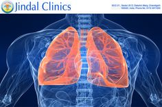 Your search for best pulmonologists in Chandigarh ends here at Jindal clinics. This is one of the reputed pulmonary medical clinics Chandigarh. Some of the leading pulmonary specialists in Chandigarh are associated with this clinic----> Visit http://goo.gl/IV6bZE