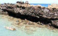 Tide Pools, St. Croix USVI