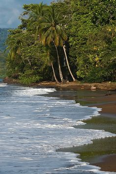 shoreline of Corcovado National Park - Costa Rica