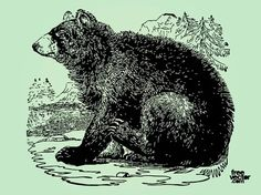 Bear Illustration Free Vector Bear Clipart, Bear Vector, Silhouette Clip Art, Animal Silhouette, Vector Design, Vector Art, Bear Stencil, Bear Images, Bear Illustration