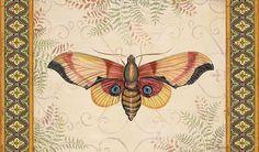 I uploaded new artwork to fineartamerica.com! - 'Vintage Wings-b' - http://fineartamerica.com/featured/vintage-wings-b-jean-plout.html via @fineartamerica