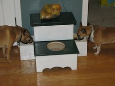 DIY..... 2  Dog feeding Station with water and storage of food. Made from a Step Stool. Hope you like !