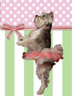My ballerina dog, Gracie is so graceful