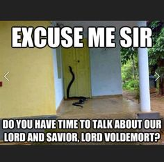 Harry Potter, Memes: Ecuse me sir Do you have time to talk about our lord and savior, lord Voldemort? Harry Potter Film, Harry Potter Jokes, Harry Potter Fandom, Harry Potter Snake, Harry Potter Imagines, Harry Potter Couples, Harry Potter Stories, Lord Voldemort, Ravenclaw