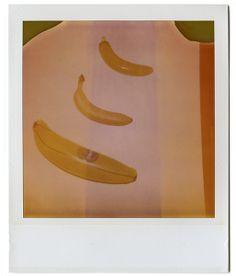 3 bananas expired polaroid