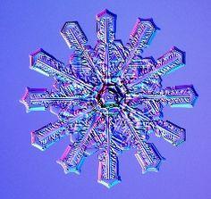 http://www.snowcrystals.com/photos/h0114b148A.jpg