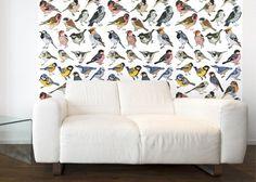 Tapeta Birds
