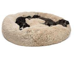 Puppy Beds, Pet Beds, Donut Cat, Cool Dog Beds, Best Dog Beds, Orthopedic Dog Bed, Dog Cushions, Fluffy Dogs, Pet Safe