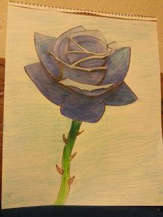 The beautiful blue rose.