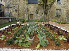 Orderly garden