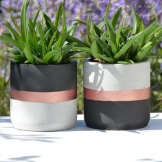 Atelier IDeco Black and rose gold set of 2 concrete round planters This set of 2 concrete pot holders is black and rose gold painted. Ideal for an industrial dining room, a hygge home or a Scandinavian modern decor, this concrete ornament also suits for Rose Gold Room Decor, Rose Gold Rooms, Gold Bedroom Decor, Rose Gold And Grey Bedroom, Grey And Gold, Bedroom Furniture, Bedroom Ideas, Black And Gold Living Room, Gold Office Decor