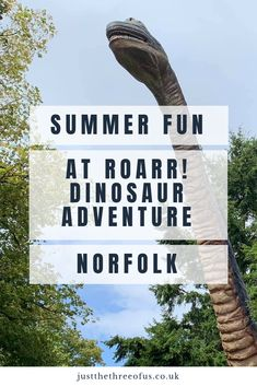 Dinosaur Adventure is one of our favourite places to visit in Norfolk, it offers 85 acres of fun and adventure for the whole family. There really is something for the whole family, no matter how old you are or even what season it is. Us Travel, Family Travel, Travel Tips, Indoor Play Areas, Thing 1, Family Days Out, Positive Attitude, Summer Activities, Norfolk