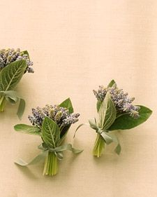 Bouquets for Brides and Bridesmaids - Martha Stewart Weddings Flowers Brides And Bridesmaids, Bridesmaid Bouquet, Wedding Bouquets, 2016 Wedding Trends, Wedding Ideas, Herb Bouquet, Herb Wedding, Sage Plant, Lambs Ear
