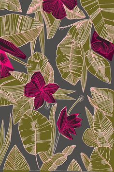 Illustration : Elena Boils, fleurs et feuillage, exotique, violet - vert