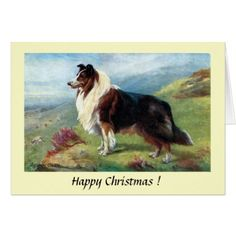 Christmas Card - A Scotch Collie - Xmascards ChristmasEve Christmas Eve Christmas merry xmas family holy kids gifts holidays Santa cards