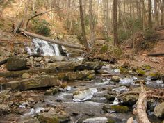 These 12 Hidden Waterfalls In New Jersey Will Take Your Breath Away | Only In Your State