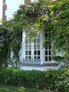 The bow-windows