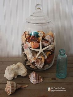 Shell Decorating Ideas | Shell Display | Decorating Ideas | Pinterest