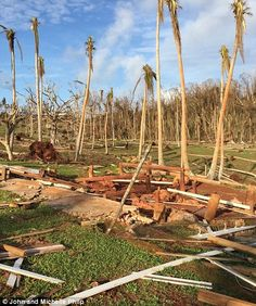 Volunteers who provided aid to remote villages after Fiji was ravaged by Cyclone Winston have described the harrowing scenes they were met with in the days after the category five storm hit. Fiji Culture, Fly To Fiji, Visit Fiji, Fiji Beach, Before And After Pictures, Beautiful Sunrise, Extreme Weather, Natural Disasters, Picture Show