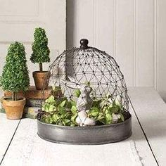 Farmhouse Decor, Cake Stand, Planter Trellis , French Chicken Wire Cloche with Tray Chicken Wire Crafts, Chicken Wire Art, Cloche Decor, Country Farmhouse Decor, Vintage Farmhouse, Modern Farmhouse, Country Chic, Country Kitchen, Metal Trays
